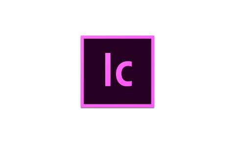 Adobe 创意应用软件 2020 合集  电脑软件 Windows 第13张